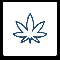 Cannabisx2