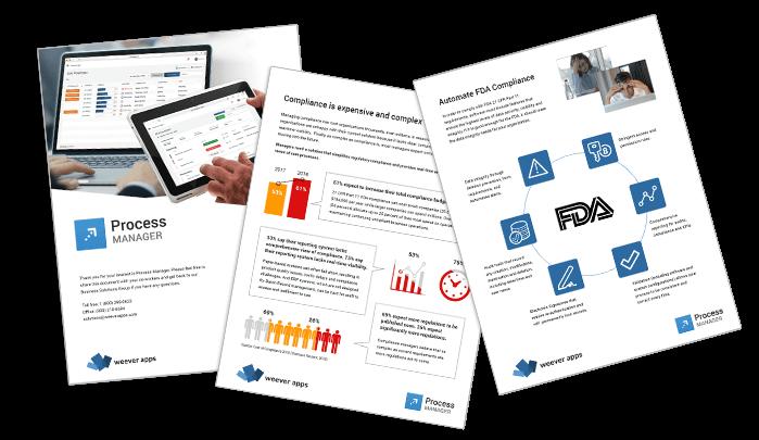 Process Manager Brochure website banner landscape