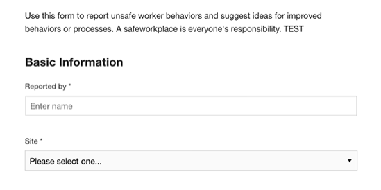 Safety-Behavioral-Observation-Form-Template